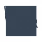 TFT Icon