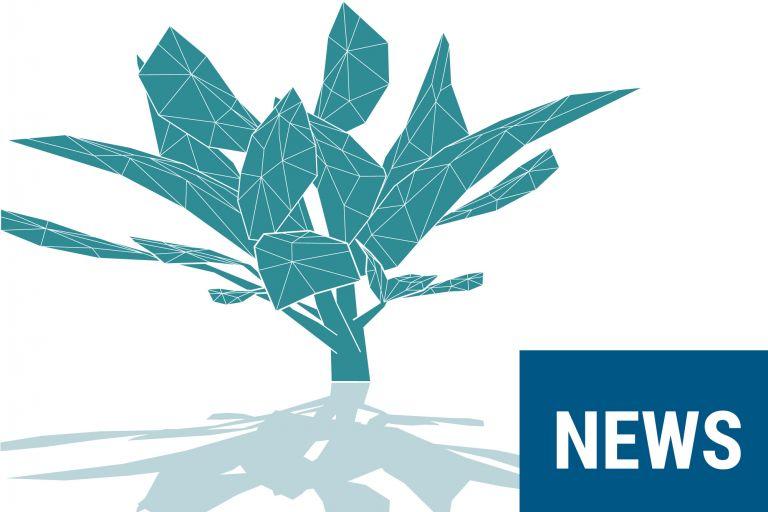 Partenariat Bb Net Synaxon