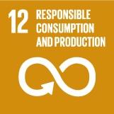 Ziel 12 für nachhaltigen Konsum und Produktion sorgen